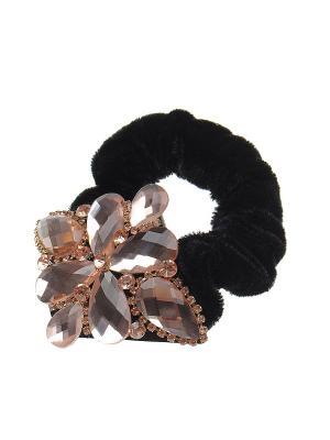 Резинка для волос Gusachi. Цвет: черный, бежевый