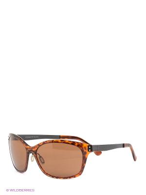 Солнцезащитные очки Serengeti. Цвет: коричневый