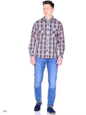 Рубашка YC COTTON. Цвет: черный, красный