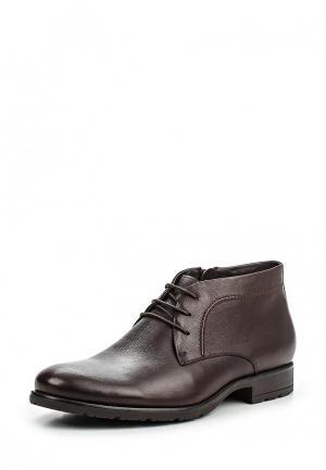 Ботинки классические Dino Ricci. Цвет: коричневый