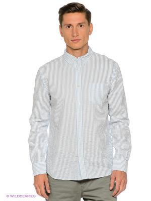 Рубашка TOM FARR. Цвет: голубой, белый