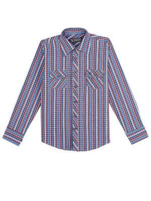 Рубашка Vitacci. Цвет: красный