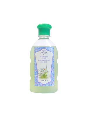 Шампунь для нормальных волос, бутылка, 250 мл МИКРОЛИЗ. Цвет: светло-зеленый