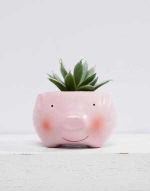 New Look Цветочный горшок в виде свиньи. Цвет: розовый
