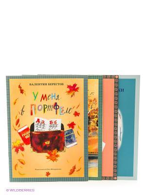 Комплект книг для младших школьников Камешки Издательский Дом Мещерякова. Цвет: оранжевый