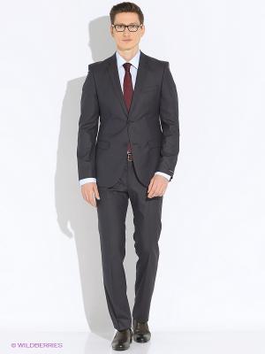 Мужской костюм Barkland. Цвет: серый