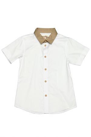 Рубашка il MIO tutto. Цвет: бежевый