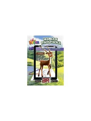 Раскраска Волшебная долина А4, мягкая обложка DEVAR kids. Цвет: зеленый