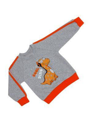 Свитшот LITTLE WORLD OF ALENA. Цвет: серый, оранжевый