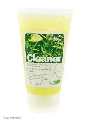 Гель для умывания ТМ BEAUTY HOST Rosemary Deeply Purifying Cleanser, 160 мл.. Цвет: светло-зеленый, прозрачный