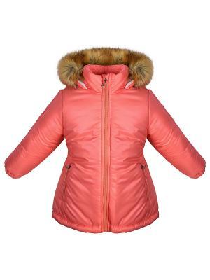Куртка Bell bimbo. Цвет: коралловый
