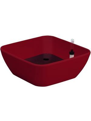 GREEN APPLE Бонсайница с автополивом 22*22*10 красная. Цвет: красный