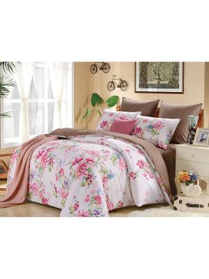Комплект постельного белья, Амина, Семейный KAZANOV.A.. Цвет: белый