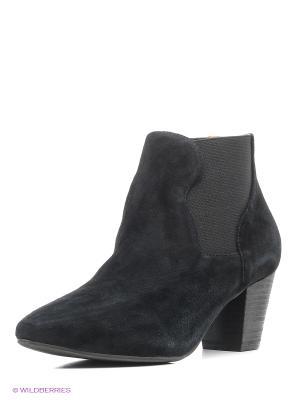 Ботильоны Shoe the Bear. Цвет: черный