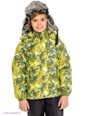 Куртка HUPPA. Цвет: салатовый, синий