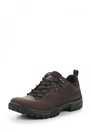 Ботинки трекинговые Ecco. Цвет: коричневый