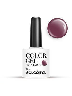 Гель-лак Color Gel Тон Red-Violet SCG162/Красно-фиолетовый SOLOMEYA. Цвет: сливовый