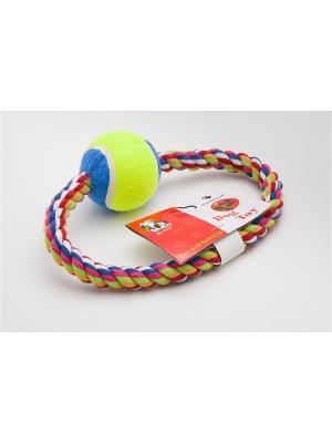 Игрушка канатная кольцо с мячом, 15 см Doggy Style. Цвет: синий, салатовый