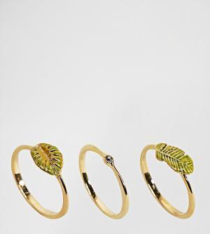 Bill Skinner Набор позолоченных колец с тропическими листьями. Цвет: золотой