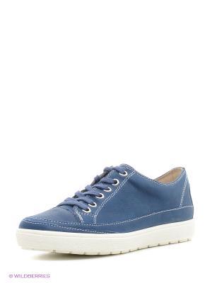 Ботинки на шнурках Caprice. Цвет: синий