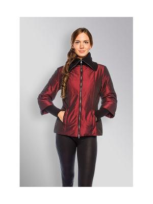 Куртка Sirenia. Цвет: бордовый
