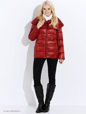 Куртка Finn Flare. Цвет: бордовый