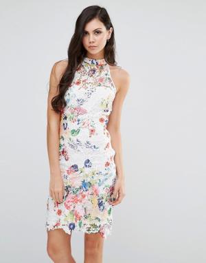 Lipstick Boutique Платье с высокой горловиной из цветочного кружева. Цвет: мульти