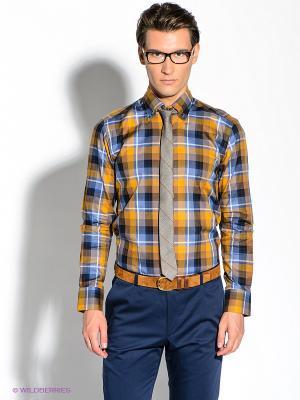 Рубашка Alex DANDY. Цвет: синий, оранжевый