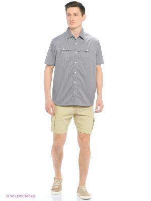 Рубашка Trespass. Цвет: черный