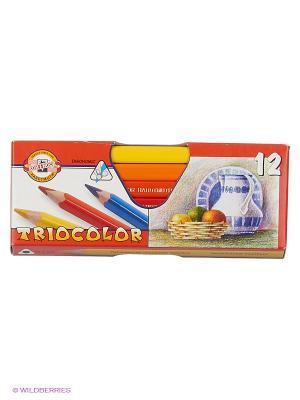 Набор цветных художественных трехгранных карандашей Tricolor (12 цветов) Koh-i-Noor. Цвет: желтый, красный, оранжевый