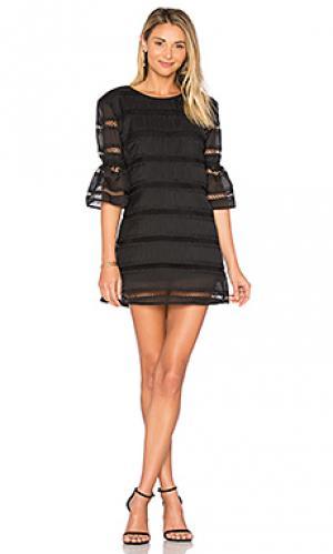Кружевное мини платье onelia Karina Grimaldi. Цвет: черный