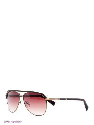 Очки солнцезащитные BLD 1515 101 Baldinini. Цвет: коричневый