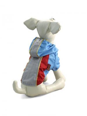 Костюм  для животных (осенний/весенний) TRIOL. Цвет: серый, голубой