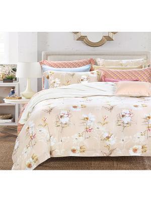 Комплект постельного белья Asabella. Цвет: бежевый