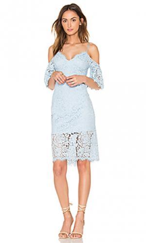 Кружевное платье karlie Bardot. Цвет: синий