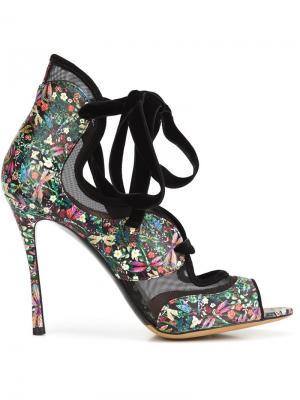 Туфли на шнуровке Freya Tabitha Simmons. Цвет: чёрный