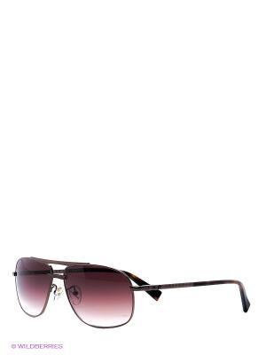 Очки солнцезащитные BLD 1527 104 Baldinini. Цвет: коричневый
