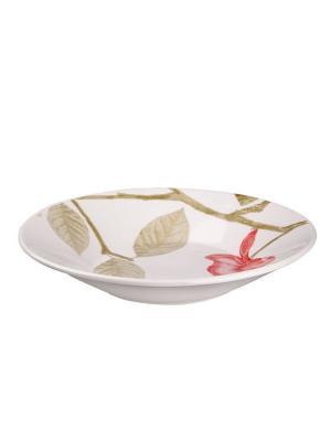Набор тарелок суповых БЬЮТИ 22 см 6 шт Biona. Цвет: белый