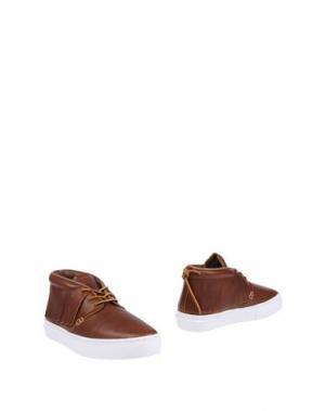 Полусапоги и высокие ботинки CLEAR WEATHER. Цвет: коричневый
