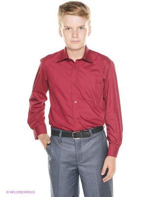 Рубашка Cascatto. Цвет: бордовый