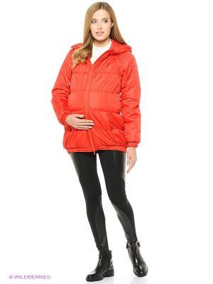 Куртка Адель. Цвет: красный