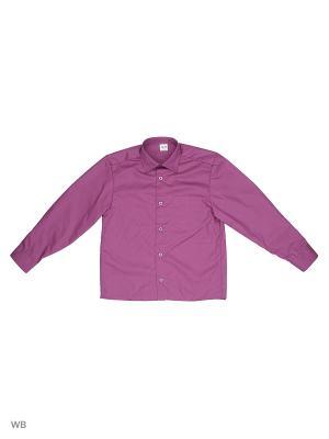 Рубашка Аэлита. Цвет: сливовый
