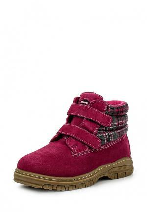 Ботинки Beppi. Цвет: фиолетовый