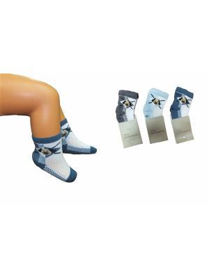 Носки, 3 пары PERA MAYA. Цвет: голубой, серый, синий