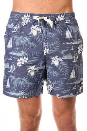 Шорты пляжные DC Cercius 16.5 Jamv Cruiser Island Vinta Shoes. Цвет: синий