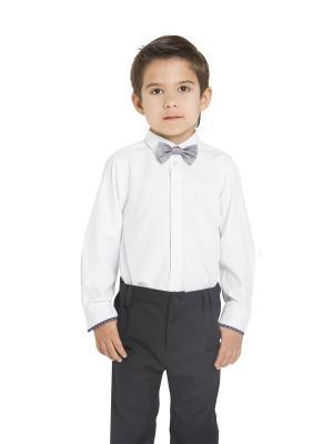 Рубашка Карамелли. Цвет: белый