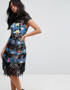 Foxiedox Платье миди с кружевом и принтом. Цвет: черный