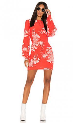 Платье garden ROLLAS ROLLA'S. Цвет: красный