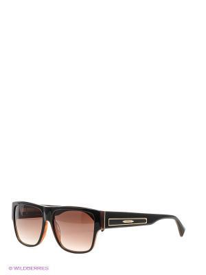 Очки солнцезащитные BLD 1511 101 Baldinini. Цвет: коричневый