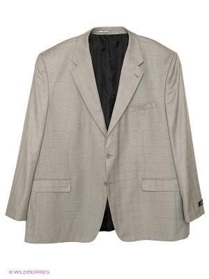 Пиджак OLSER. Цвет: серый